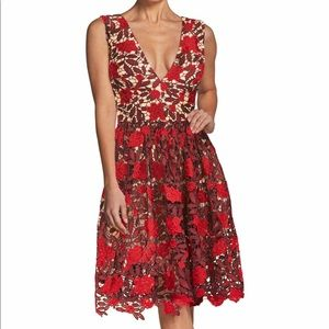 Rita Plunge Neck Lace Fit & Flare Valentine Dress